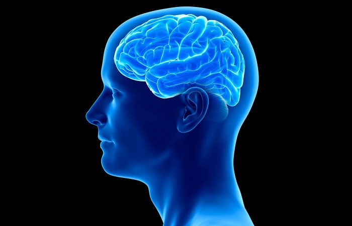 Reasons for pineal gland calcification